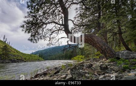 Frank Church River of No Return Wilderness, Idaho. USA ...
