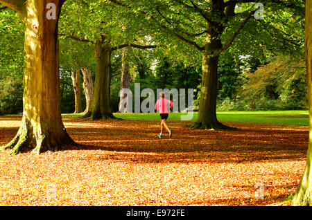 Bristol, UK. 21st Oct, 2014. UK Weather: Lull before the Storm. A lone runner takes in the glorious sunshine through - Stock Photo