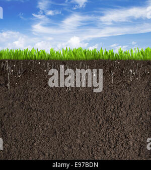 Soil or dirt section with grass under sky as background - Stock Photo