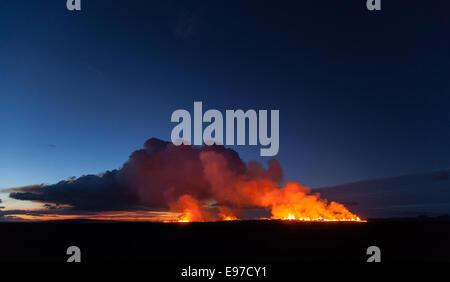 dawn over Holuraun eruption - Stock Photo