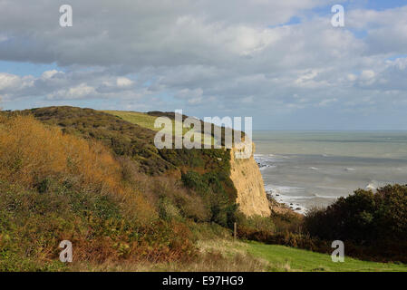 Ecclesbourne Glen. Hastings Country Park. Sussex - Stock Photo