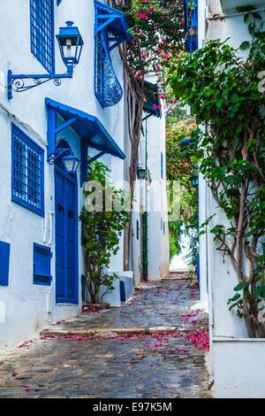 Narrow cobbled alleyway in Sidi Bou Said, Tunisia. - Stock Photo
