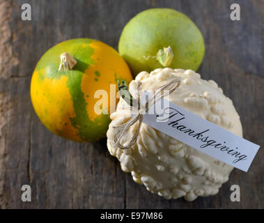 different pumpkins for Thanksgiving on old wooden background - Stock Photo