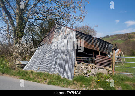Collapsed derelict shed or farm outbuilding Near Tregaron Ceredigion Mid Wales UK - Stock Photo
