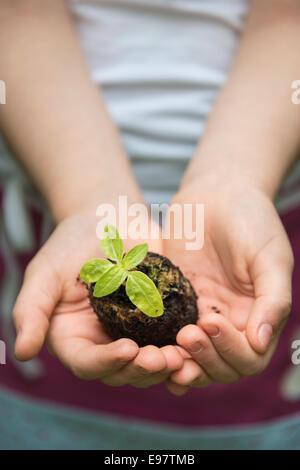 Little girl gardening, holding seedling in hands - Stock Photo