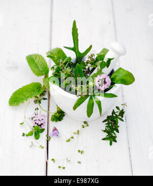 Flowering Assorted Herbs in a Mortar with pestle on white wooden background - Stock Photo