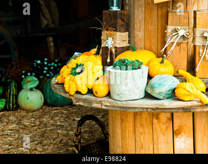 Different Sorts of Pumpkins on a wooden rounded Table for fall concepts - Stock Photo