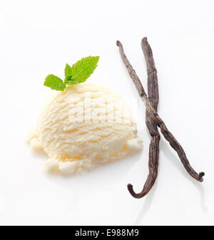 Creamy icecream and dried vanilla pods used as a flavouring ingredient during manufacture - Stock Photo