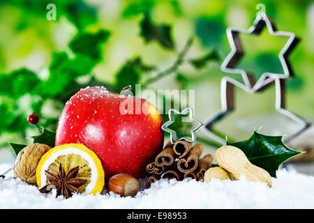 Christmas still life background with a red apple, nuts, and spices against green foliage with holly and stars - Stock Photo