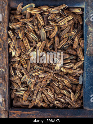 Overhead view of dried fennel seeds, one of the main ingredients of absinthe and used as a spice and flavouring - Stock Photo