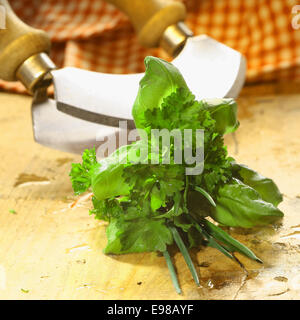 Bouquet garni of fresh herbs including basil, crinkly leaf parsley and chives lying on a wooden table in front of - Stock Photo