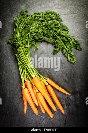 Bunch of fresh farm carrots with their green leaves at a farmers market lying on an old textured slate surface, - Stock Photo