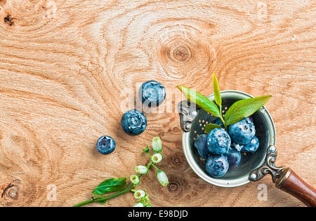 Top-view of blueberries or bilberries in an old antique metal ladle decorated with leafs and flower buds and copy - Stock Photo