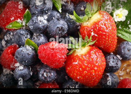 Berry background with water droplets on fresh ripe red strawberries, raspberries and blueberries, closeup view - Stock Photo