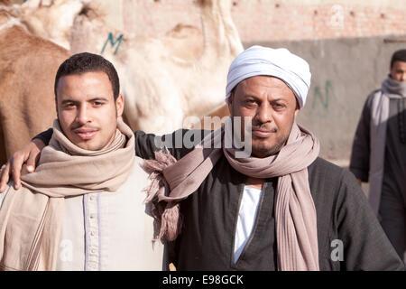 Camel Vendors ... Camel market at Giza Egypt. - Stock Photo