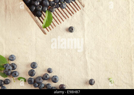 Plenty Sweet Blue Berries on Off White Table Cloth - Stock Photo