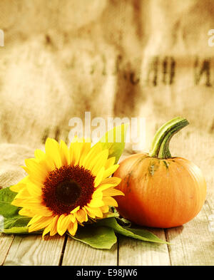 Autumn Village Harvest Festival Thanksgiving Or Background Of A Bright Yellow Sunflower And Fresh Pumpkin Orange Squash On