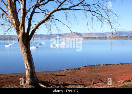 Leafless Branches Overhanging Yachts anchored on Midmar Dam in the Midlands of Kwa-Zulu Natal, South Africa - Stock Photo