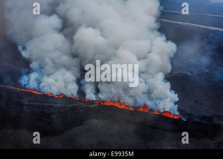 Lava and plumes from the Holuhraun Fissure, Bardarbunga Volcano, Iceland. - Stock Photo