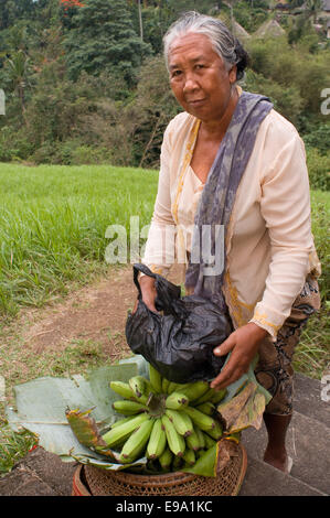 A woman selling bananas along the paddy fields that accompany the walk along the ridge of Campuan. Ubud. Bali. Campuhan - Stock Photo