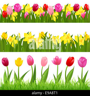 Flower Borders - Stock Photo