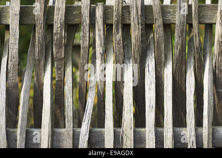Braides batten fence - Stock Photo