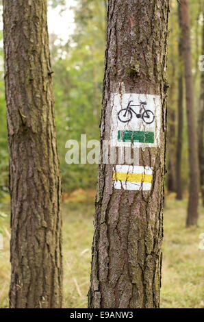 Designation of forest trails for bikes and walkers. - Stock Photo
