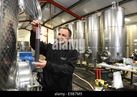Clive Vickers director at Halfpenny Green Vineyards testing wine gravity with hydrometer in Staffordshire England - Stock Photo