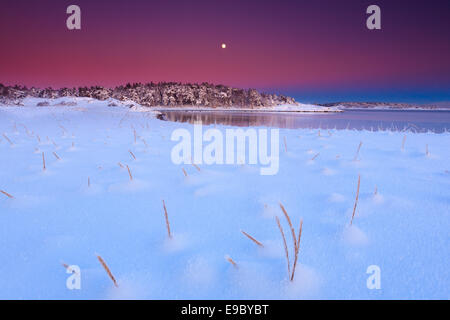 Snowy landscape on a winter evening by the Oslofjord at Larkollen in Rygge kommune, Østfold fylke, Norway. - Stock Photo