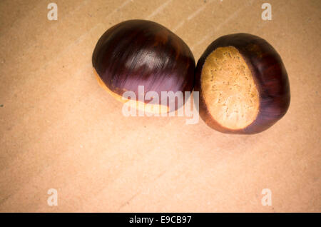 two ripe chestnuts on a cardboard background - Stock Photo