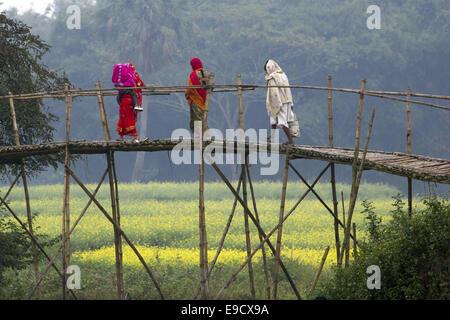 Munshigonj, Bangladesh. 2nd Jan, 2012. Women are passing wooden bridge in a village in Bangladesh.Life in a Bangladesh - Stock Photo