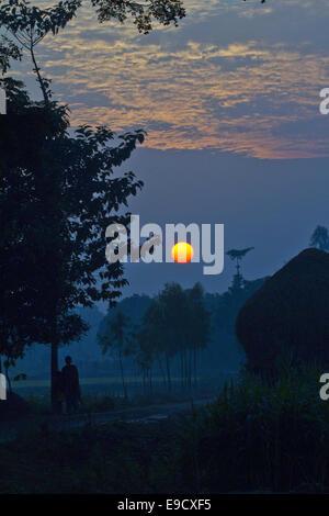 Munshigonj, Bangladesh. 2nd Jan, 2012. Sunset scenery of a village.Life in a Bangladesh village is, as a rule, dull - Stock Photo
