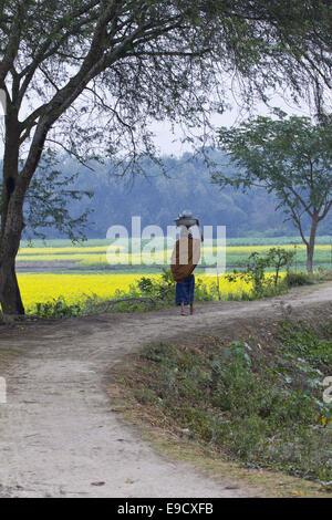 Munshigonj, Bangladesh. 2nd Jan, 2012. Life in a Bangladesh village is, as a rule, dull and monotonous. The village - Stock Photo