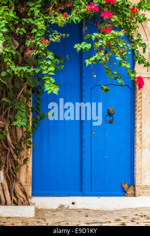 A cat sits on the doorstep by a typical blue front door in Sidi Bou Said, Tunisia. - Stock Photo