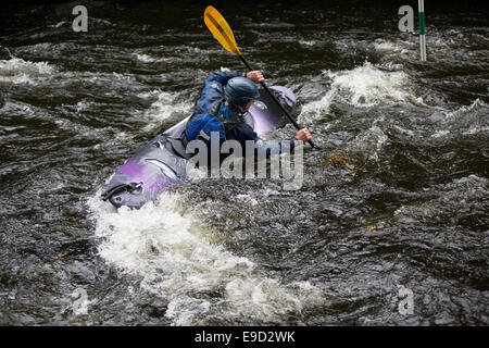 Llandysul, Wales, UK. 25th Oct, 2014. Hundreds of paddlers gather at Llandysul to enjoy the annual two day Teifi - Stock Photo