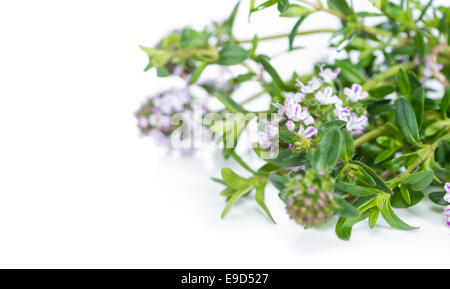 Bunch of fresh Winter Savory isolated on pure white background - Stock Photo