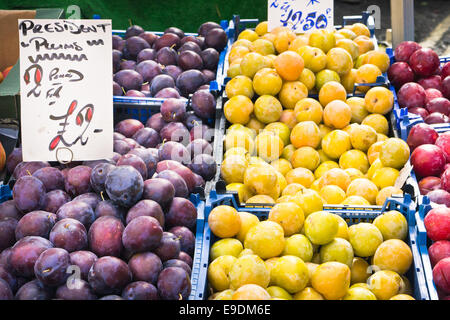 Fresh plums on sale at a market stall - Stock Photo