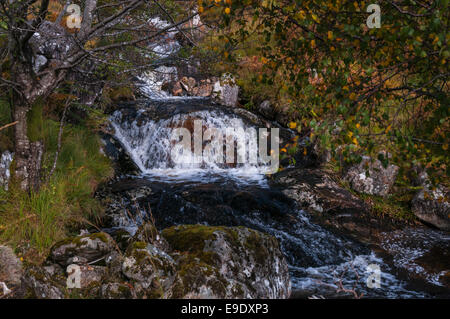 Water flowing over a rock in a Scottish burn. - Stock Photo