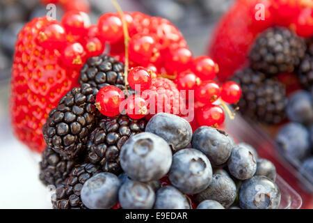 Fresh berries blackberry blueberry strawberry fruits - Stock Photo