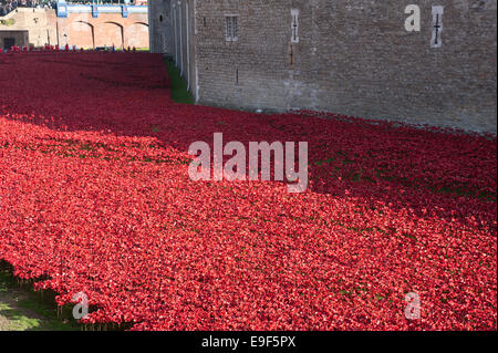 Blood Swept Lands and Seas of Red, the poppy installation at the Tower of London, Tower Hamlets, London, UK. October - Stock Photo
