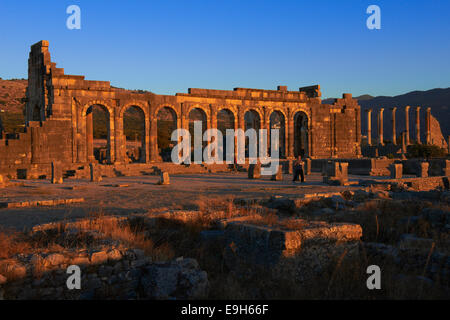 Roman ruins of Volubilis, UNESCO World Heritage Site, evening light, Mulay Idris, Meknes, Morocco - Stock Photo