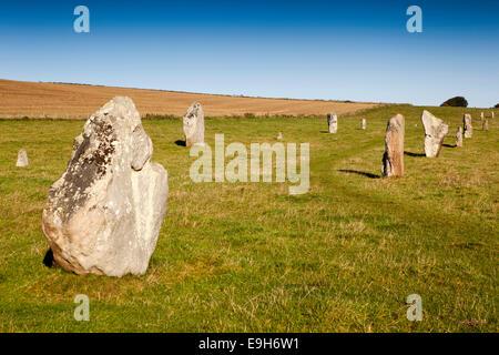 UK, England, Wiltshire, Avebury, West Kennet Avenue line of standing stones - Stock Photo