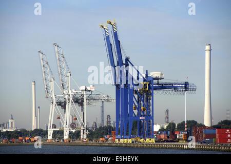 Container bridge in the harbor of Rotterdam