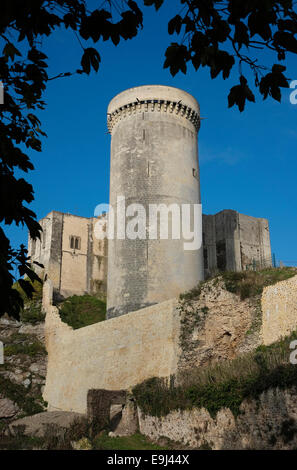 falaise chateau castle, normandy, france - Stock Photo