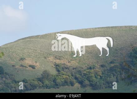 White Horse Westbury Hill Bratton Down Wiltshire England - Stock Photo