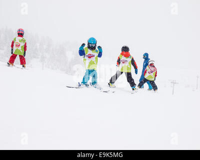 young children aged five years wearing helmets and goggles learning to ski in a group lesson with instructor in - Stock Photo