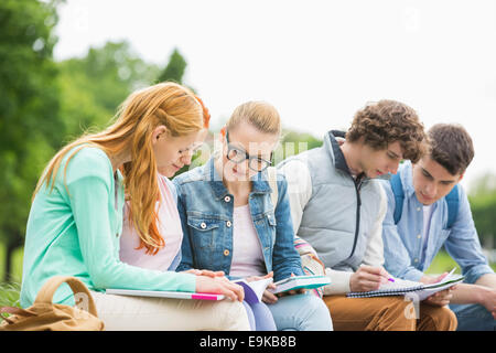University students studying together in park - Stock Photo
