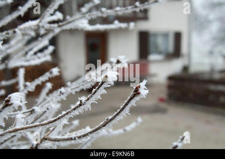Winter! - Stock Photo