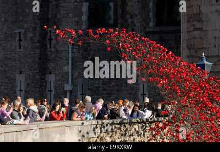 Tower of London Poppies as a memorial to the soldiers who died in the first world war ( WW1 ), London England UK - Stock Photo