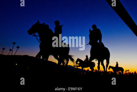 Arcadia, CA, USA. 29th Oct, 2014. October 29, 2014: Scenes from around the track as the sun rises and horses prepare - Stock Photo